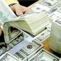 تاثیر نوسانات ارز بر قیمت جو و ذرت