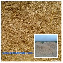 کاه گندم گونی شده